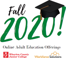 Attention Falcons: Interested in FREE Online Adult Education and Literacy Courses?
