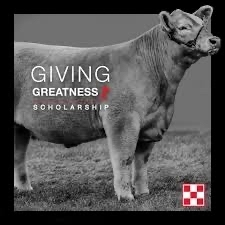 Purina Giving Greatness Scholarship